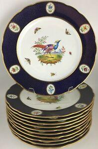 Copeland C1251 (11) Eleven luncheon plates T. Goode & Co. London