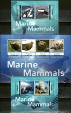 2012 Canouan St. Vincent, marine mammals, 2 S/sheet+sheet, MNH