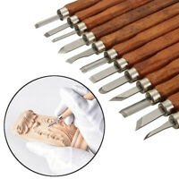 12x Pumpkin Wood Carving Hand Chisel Tool Kit Professional Woodworking Gouges