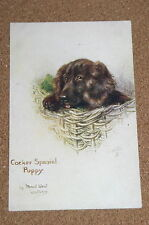 Vintage Postcard: Cocker Spaniel Puppy in a Basket, Maud West Watson, Tucks