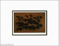 New BISON by BENJAMIN CHEE CHEE Canadian Woodlands Indian matted art print