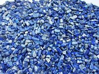 LAPIS LAZULI Afghanistan 7-12mm Tumbled Chips xmini-xsmall 1/2 lb Bulk Stones