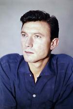 Laurence Harvey 11x17 Mini Poster studio portrait color photo
