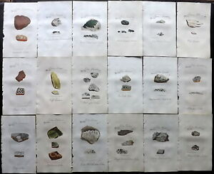 Sowerby C1800 Lot of 18 Hand Col Botanical Prints, Lichens, Book Plates