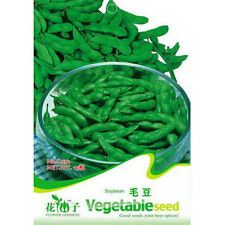 FD1290 Edamame Seed Soybean Seed Soy Bean Green Vegetable ~1 Pack 20 Seeds~~