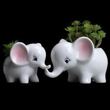 Plant Window Box Cute Elephant Flower Pot White Ceramic Succulent Planter Pots