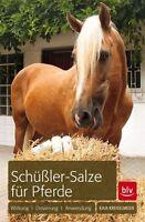 Schüßler Salze für Pferde 2014/15 Kaja Kreiselmeier, ungelesen wie neu