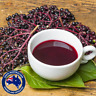 Organic Elderberry Sambuccus nigra coughs colds flu bacterial viral herbal tea
