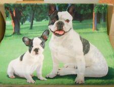 New Soft Cute French Bulldog Fleece Throw Gift Blanket Breed Dog Puppy Sitting