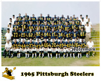 NFL 1965 Pittsburgh Steelers Team Picture Color 8 X 10 Photo Picture