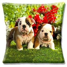 "NEW TWO CUTE ENGLISH BULLDOG PUPPIES ON GRASS GARDEN 16"" Pillow Cushion Cover"