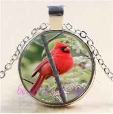 Northern Cardinal Photo Cabochon Glass Tibet Silver Pendant Necklace#B25