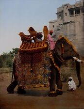 """""""Government Elephant in State Costume"""" c1900 (detroit photographic   india)"""