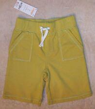 NWT 3-6 M Gymboree SURF ROCKS Basic Green Elastic Waist Knit Shorts