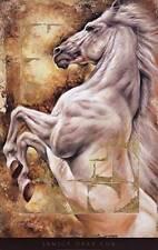 Kingdoms Unite by Janice Darr Cua Fine Horse Art Print Poster Home Decor 72884