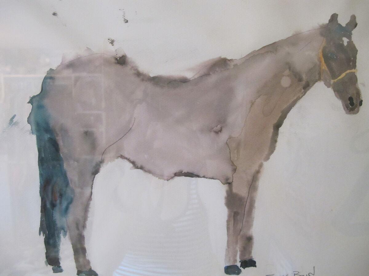 Boyd s Horse Dreams