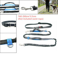 Pet Dog Leash Traction Rope Running Belt Reflective Elastic Hands Freely Jogging