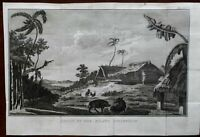 Pacific Isl. Nomuka Native Village Boards Chickens Walls 1801 Captain Cook print