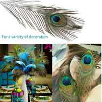 10 inches 10Pcs Real Peacock Feathers Natural Color Tail Eyes DIY Decorations