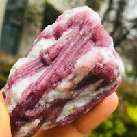 120g Natural Pink Tourmaline Crystal Rough Rare Mineral Specimens