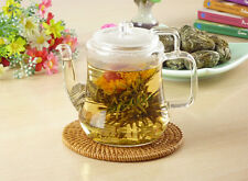 16 Yellow Chrysanthemum Magic Peach Artistic Jasmine Blooming Teas
