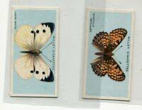 1927 W.D. & H.O. WILL'S CIGARETTES BRITISH BUTTERFLIES 2 CARD LOT