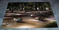 ENCHANTED FOREST PARK NORTH MIAMI FLORIDA TRAIL DUCKS TREES LANDSCAPE PAINTING