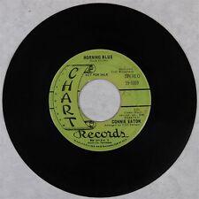 Connie Eaton Morning Blue Chart 59-5009 Promo