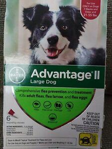 Bayer Advantage II Flea Control Large Dogs 21-55 lbs  6-Dose