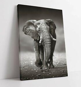 ELEPHANT BLACK/WHITE- DEEP FRAMED CANVAS WALL ART PICTURE PRINT- ANIMAL SAFARI