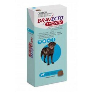 Bravecto Large 20-40kg Blue Dog 1 Month Chew Treatment 1 pack (1 month)