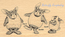 HAPPY HOPPERS EASTER Bunny Eggs Wood Mounted Rubber Stamp STAMPENDOUS HHP07 New