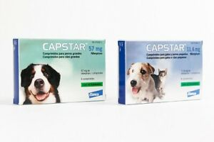 CAPSTAR anti puces Chien/Chat