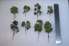 N Gauge Medium Sized Trees x 8