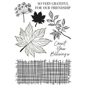 KaiserCraft Clear Stamp Fallen Leaves Autumn Fall Brown Maple Leaf Texture Clay