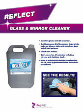 REFLECT Professional Strength Glass and Mirror Cleaner - Window and Shower