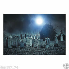 HALLOWEEN Party Decoration Prop HAUNTED CEMETERY Backdrop Photo Mural Banner
