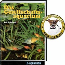 Ratgeber Gesellschafts-Aquarium: Welche Fische passen zusammen? passende Becken?