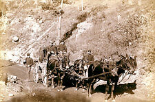 1888 Photo U.S. Paymaster Stagecoach & Guards on Deadwood Road to Ft. Meade