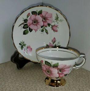 Rosina England Bone China Teacup And Saucer