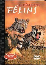 * Le défi entre félins - Livre DVD Broché - 2005 - NEUF -