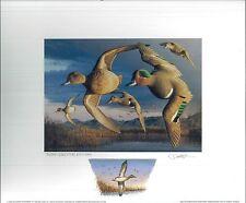 CALIFORNIA #28 1998 STATE DUCK PRINT Robert Steiner, Color Remarque #75/250