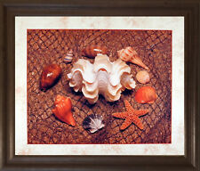 Starfish with Seashell Ocean Wall Art Bathroom Decor Brown Rust Framed Picture