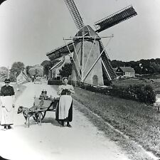 Vtg Keystone Magic Lantern Slide Photo Dutch Windmill Dog Pulling Milk Cart
