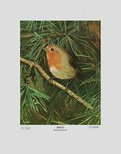 Signed Limited Edition Lithograph Print of Robin