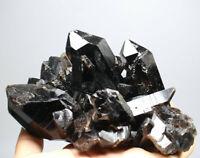 2.05lb Natural Rare Beautiful Black QUARTZ Crystal Cluster Mineral Specimen