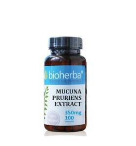 MUCUNA PRURIENS SEED EXTRACT,Stimulate sexual function,100% Natural,100 caps.