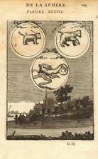 CONSTELLATIONS. Ursa Major & Minor Great/Little Bear. Cetus Whale. MALLET 1683