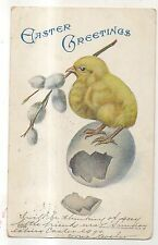 """Easter Greetings"" Cute Baby Chick on Eggshell, Vintage 1906 Postcard"