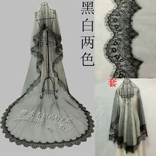 3M Long Cathedral Train Appliques Tulle Wedding Bridal Veil Bride Hair Accessory
